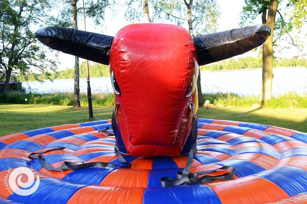ręcznie sterowany byk rodeo - poznań i łódź