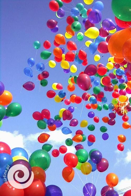 siatka na balony z helem konin, poznań